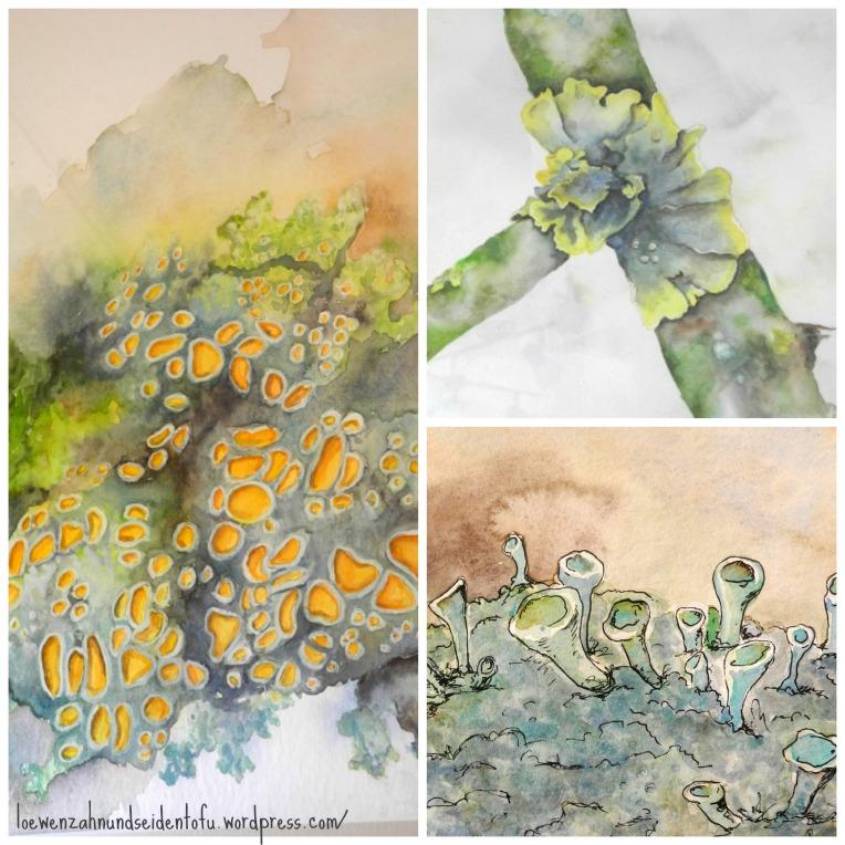 watercolor lichen