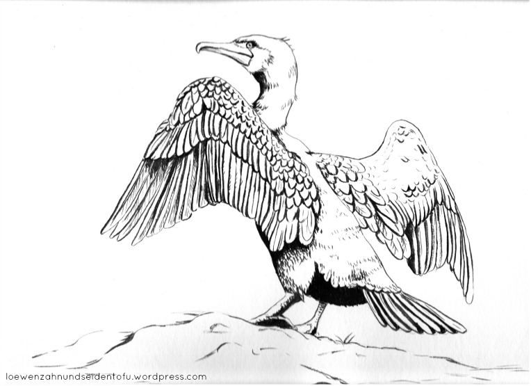 #inktober cormorant, ink Kormoran in TInte