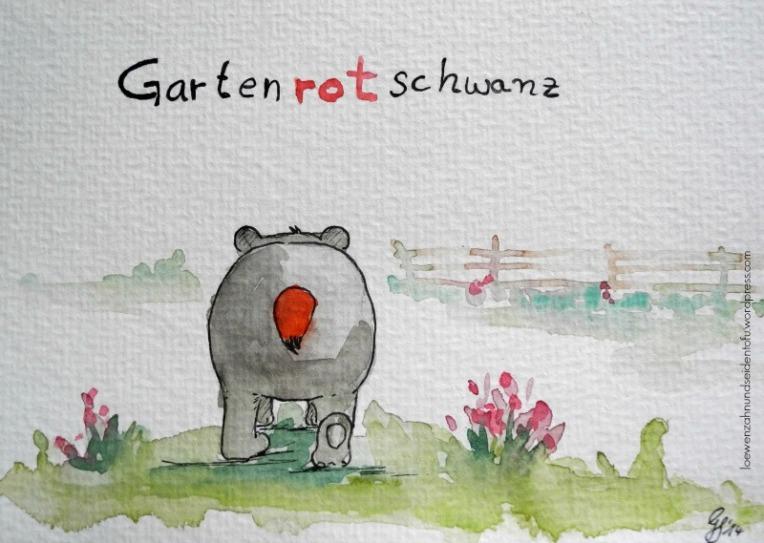 A badgers dream, Dachsträume: Gartenrotschwanz
