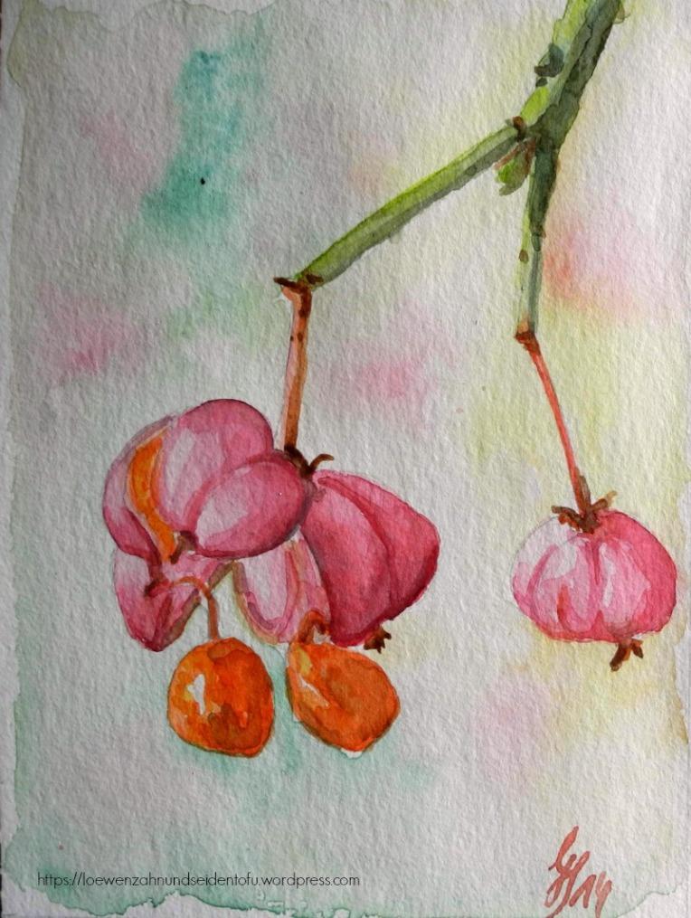 Pfaffenhütchen Euonymus europaeus Aquarell, watercolor